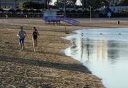 Sharktopus Running Couple