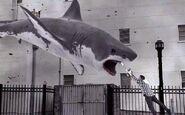 Sharknado Shark