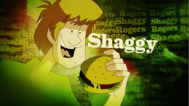 File:Shaggy Rogers' picture card.png