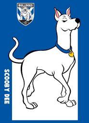 NRL Grand Final Scooby Dee Canterbury Bankstown Bulldogs