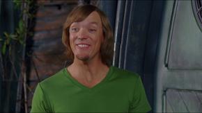 Shaggy Rogers (Matthew Lillard)