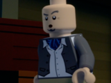 Director (LEGO Scooby-Doo! Haunted Hollywood)