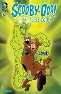 WAY 43 (DC Comics) digital front cover