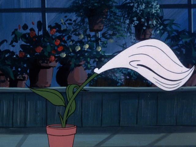 File:Flytrap lily.png