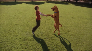 Scoob and Shag (live-action TV films)