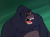 Ape Man (Never Ape an Ape Man)