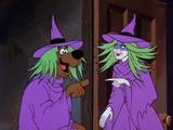 To Switch a Witch