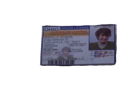 Shaggy's Driver's License