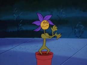 Shogun Philodendron