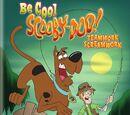 Be Cool, Scooby-Doo!: Season 1, Part 2 - Teamwork Screamwork