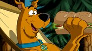 Scooby 11