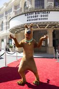 64 - Scooby marquee