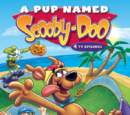 A Pup Named Scooby-Doo: Volume 3