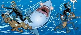 Shark attacks MI