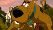 Scooby 13