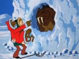 Alaskan King Coward