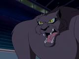 Cat Creature (What's New Scooby Doo)