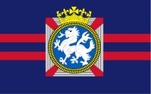 6th Special Forces Brigade Flag