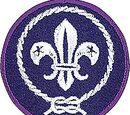 Scouting Wiki
