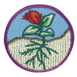 Flowers (Junior badge)   Scouts Honor Wiki   FANDOM powered