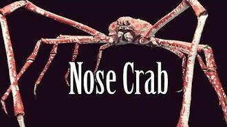 """SCP-1104 """"Nose Crab"""""""