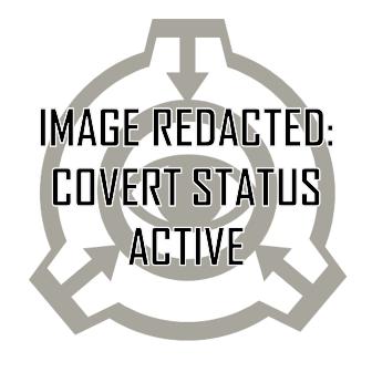File:Redacted covertstatus.PNG