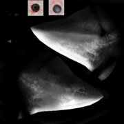 Scp-049 mask diffuse5
