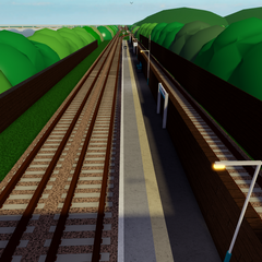 Overpass View 1