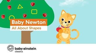 Learn Shapes for Toddlers - Baby Newton- All About Shapes - Baby Einstein