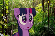 MLPCVTFB - Twilight Sparkle says for Oh my goodness,