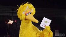 .Big Bird the Yellow Bird in Sesame Street