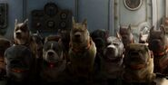 Muntz's Dogs