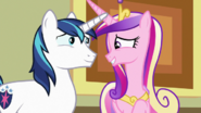 Cadance and Shining Armor fondly reminiscing S7E3