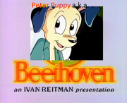 Peter Puppy a.k.a. Beethoven
