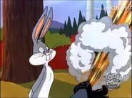 Looney Tunes on Toon Disney (February 11th 2003 RARE)