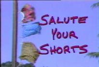 SaluteYOurShorts