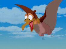 Petrie flying