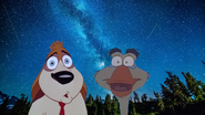 Rover and Boris Under the Stars