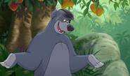 Baloo with a HorseRider Helmet