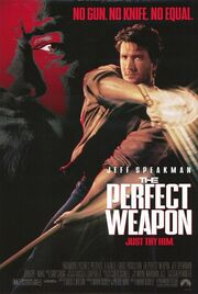 1991 - The Perfect Weapon Movie Poster