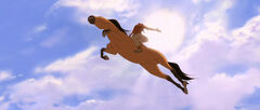 Spirit Flying