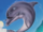 Ecco the Dolphin (Character)