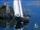 Bluenose (Theodore Tugboat)