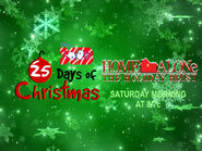 Disney XD Toons 25 Days Of Christmas Home Alone The Holiday Heist Promo 2018