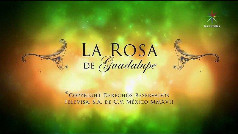 Www La Rosa De Guadalupe