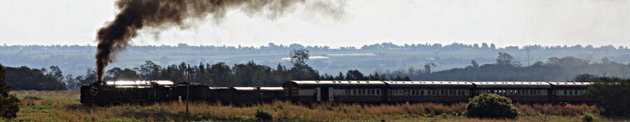 Steam locomotive joburg