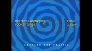 Toon Disney Toons Dexters Laboratory To Looney Tunes