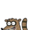 Rigby (character)