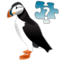 Puzzled Puffin