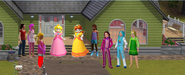 Peach and friends & Girls seasons